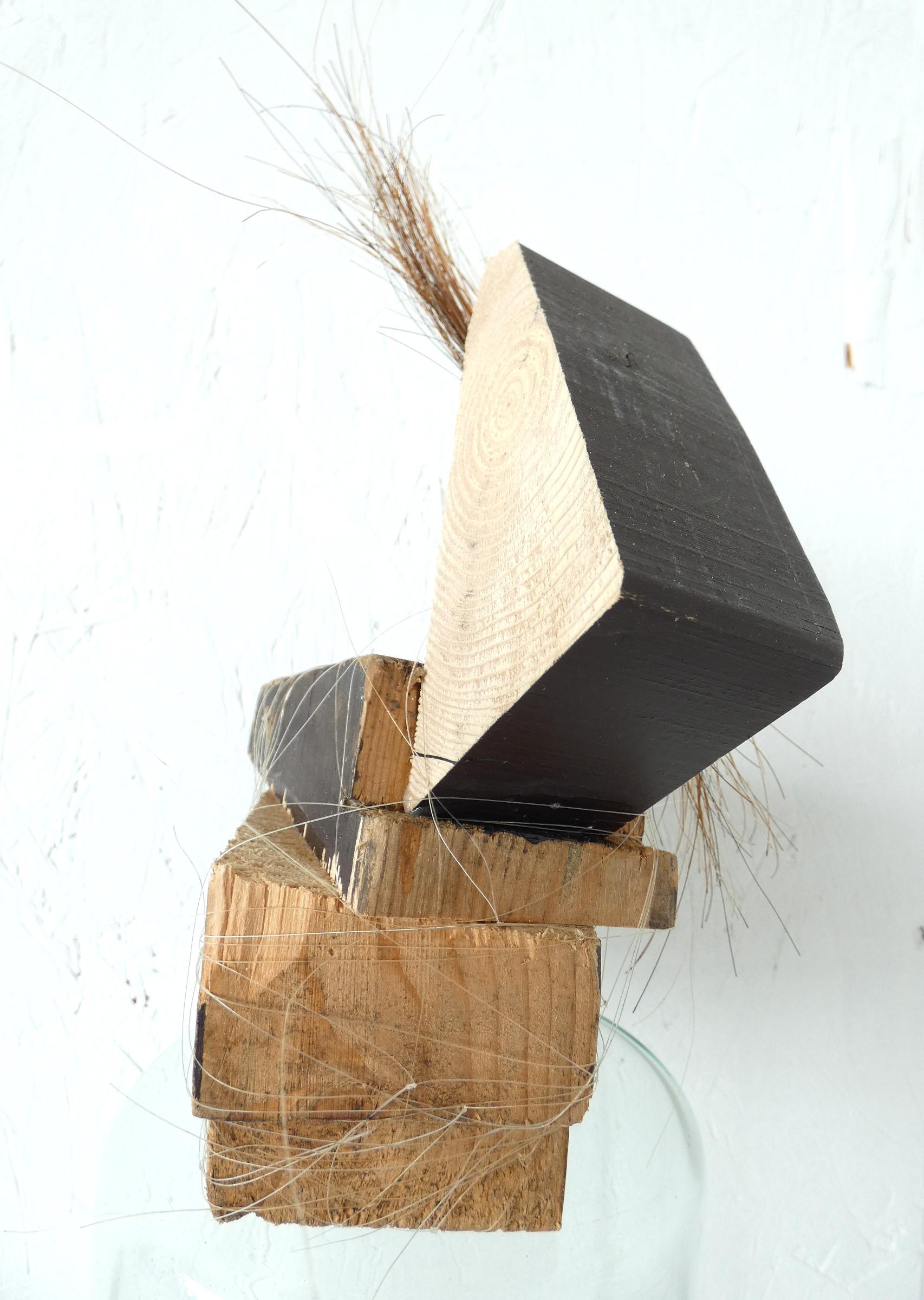 Blok paardje beeld, block horse, paardenhaar, artwork, artlovers, hout, kunst kopen, artcollectors, sculpture, kunstenaar