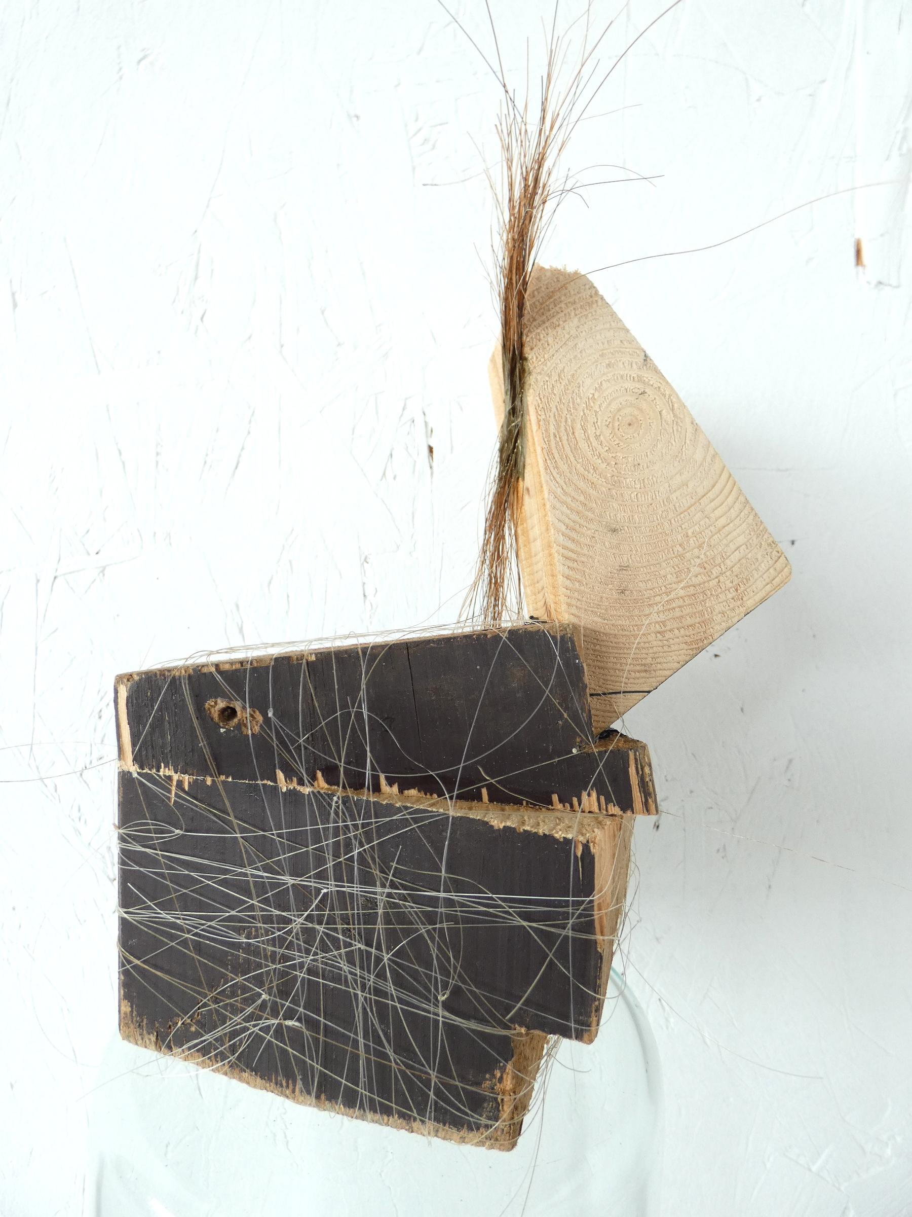 Blok paardje kunst, block horse, paardenhaar, artwork, artlovers, hout, kunst kopen, artcollectors, sculpture, kunstenaar Wietske Lycklama à Nijeholt
