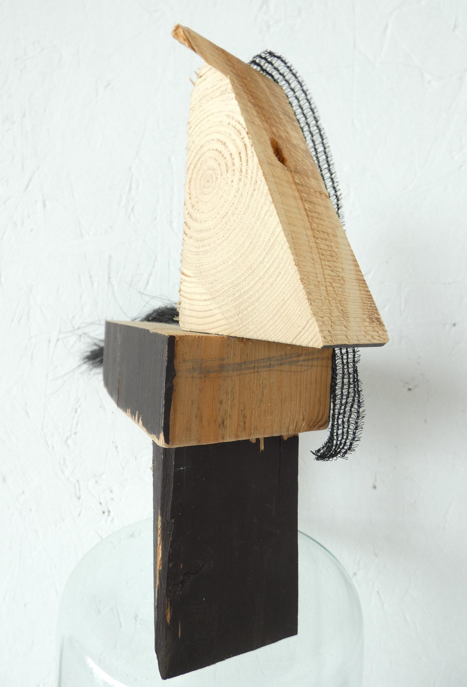 Dressuurpaard object, Dressage horse object, paardenhaar, artwork, artlovers, hout, kunst kopen, artcollectors, sculpture, kunstenaar Wietske Lycklama à Nijeholt